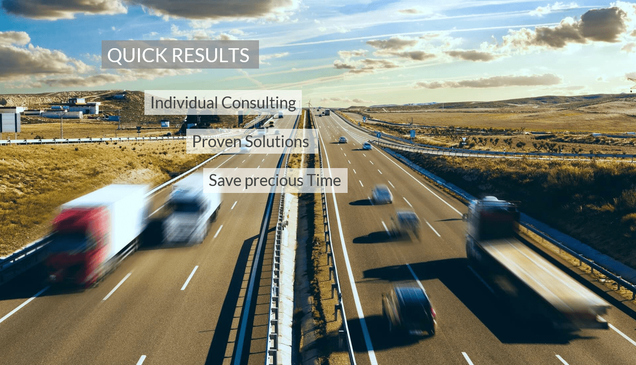 Quick Results Individual Consulting Proven Solutions Save Precious Time