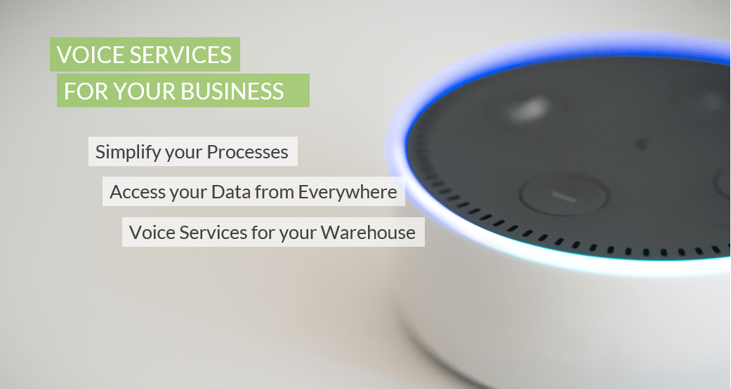 Amazon Echo Dot voice services for your business